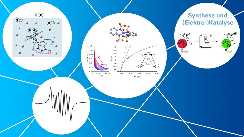 Koordinationschemie/Metallorganischechemie Ansätze zu funktionellen Materialien und Katalyse